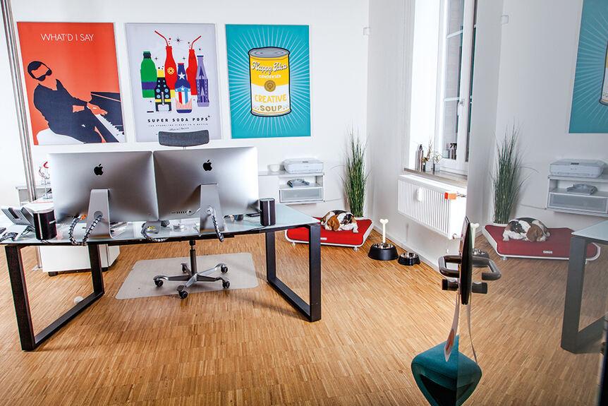 mehr licht sagt der buchsbaum verlagsver ffentlichungen b4b schwaben. Black Bedroom Furniture Sets. Home Design Ideas